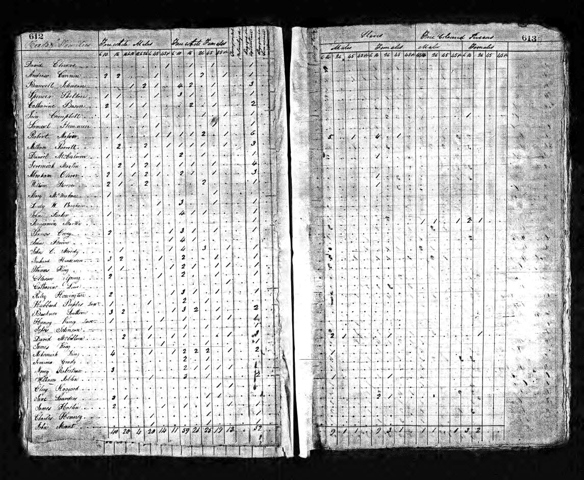 1820 U.S. Federal Census for Abraham Oliver in Rockingham County, N.C.